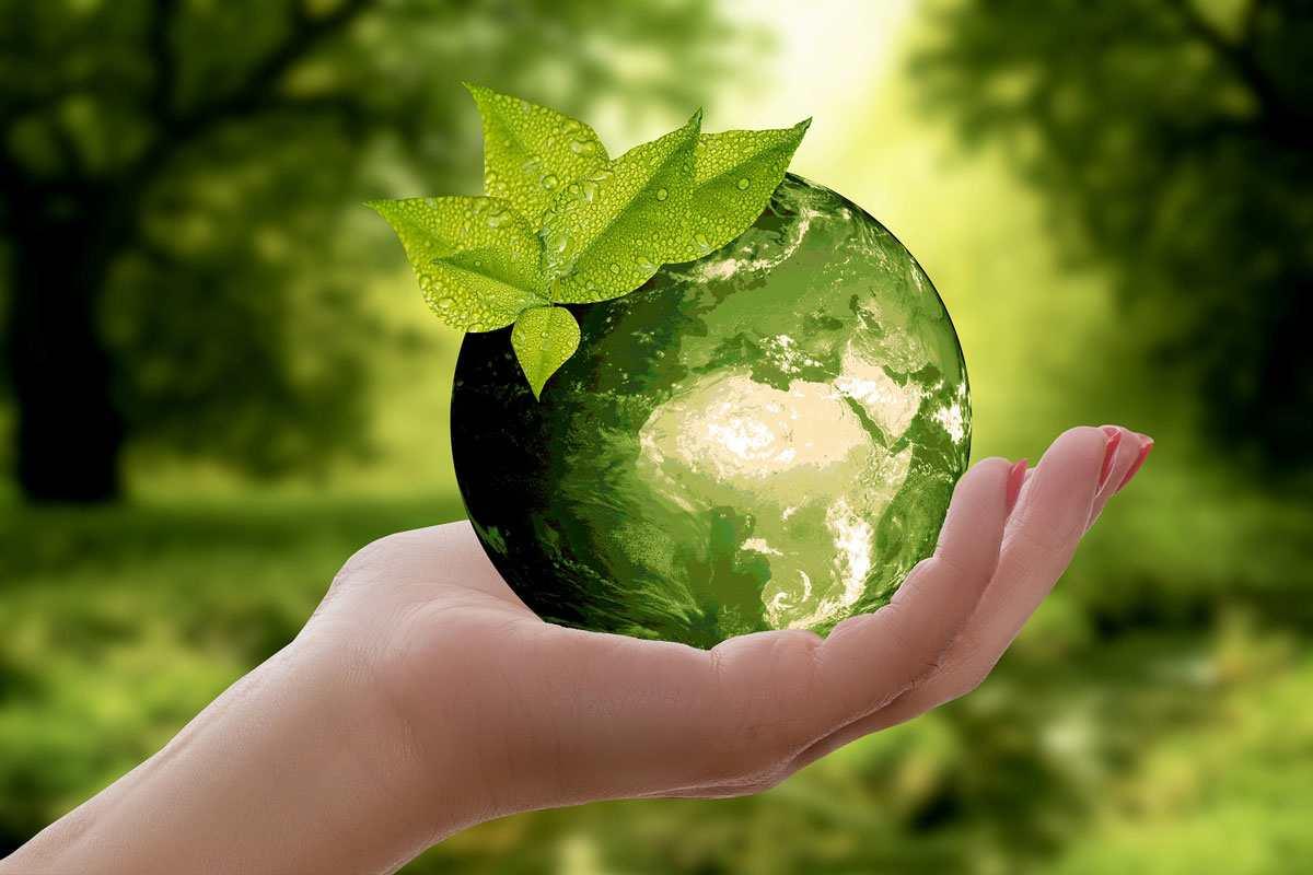 Biocarburanti: fissato nuovo target 2020